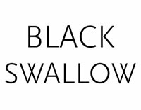 Black Swallow Boutique